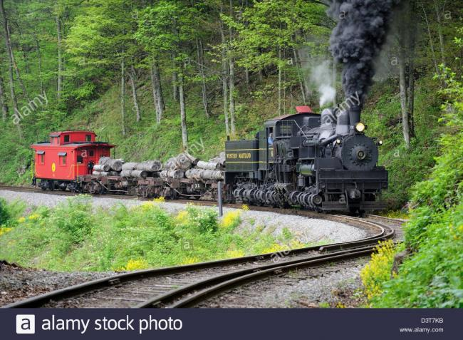 steam-train-hauling-logs-rounding-s-curve-in-the-woods-D3T7KB